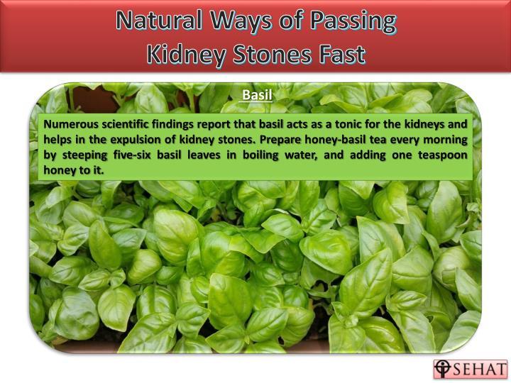 Natural Ways To Prevent Kidney Stones