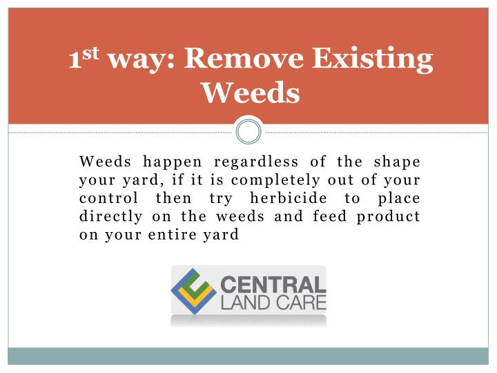 1 st way remove existing weeds