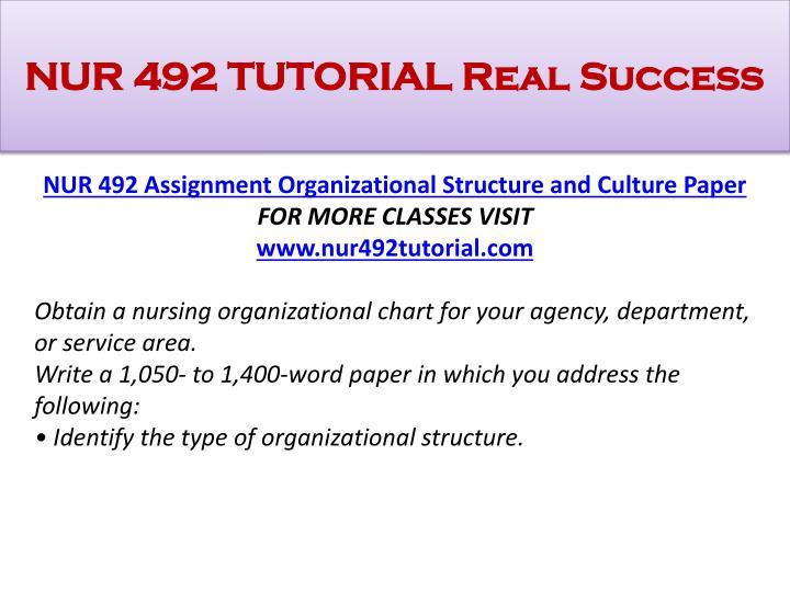nur 508 nursing leadership health policy paper Nur-508 week 2 assignment benchmark assignment - nursing leadership health policy paper.