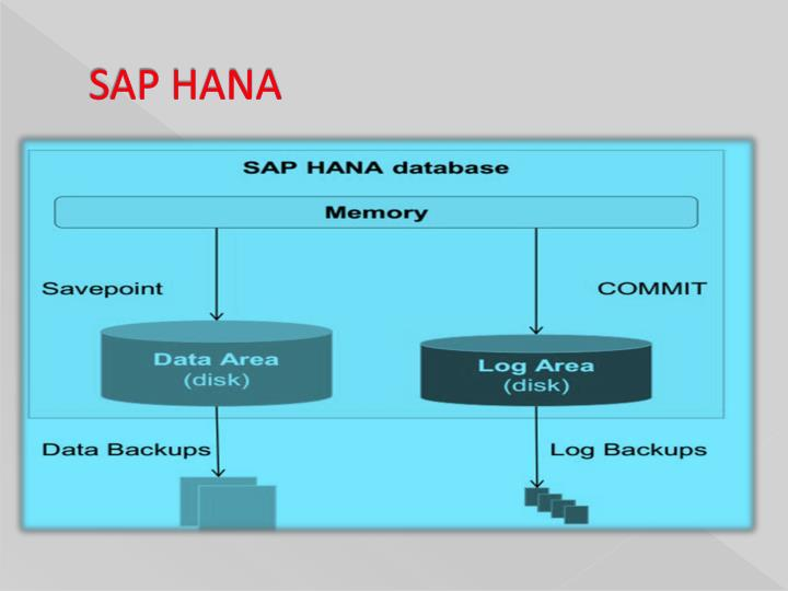SAP and SuccessFactors - An Overview