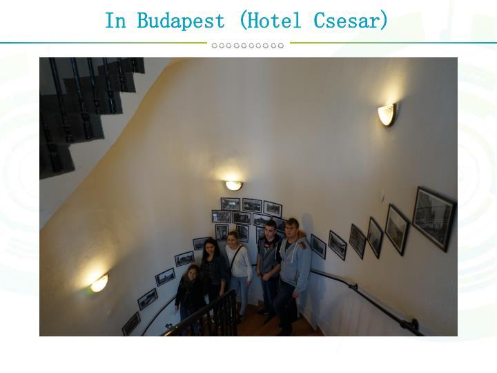 In Budapest (Hotel Csesar)