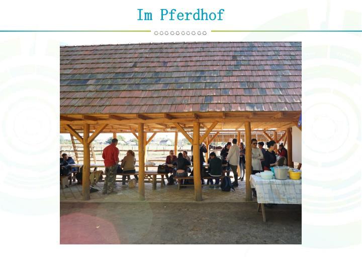 Im Pferdhof
