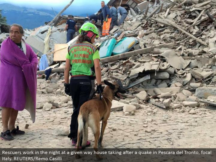 A man wrapped in a sweeping looks on as a rescuer with a pooch stand in front a fallen house taking after a shake in Amatrice, focal Italy. REUTERS/Emiliano Grillotti