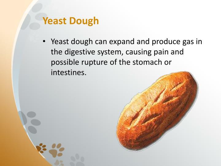 Yeast Dough