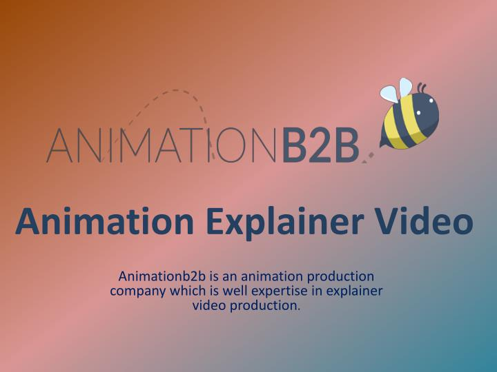 Animation Explainer Video