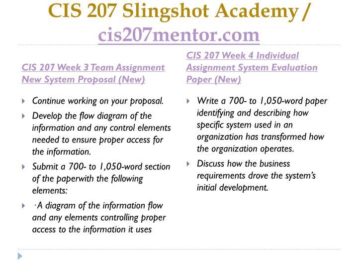 cis207 visiosupplement 2