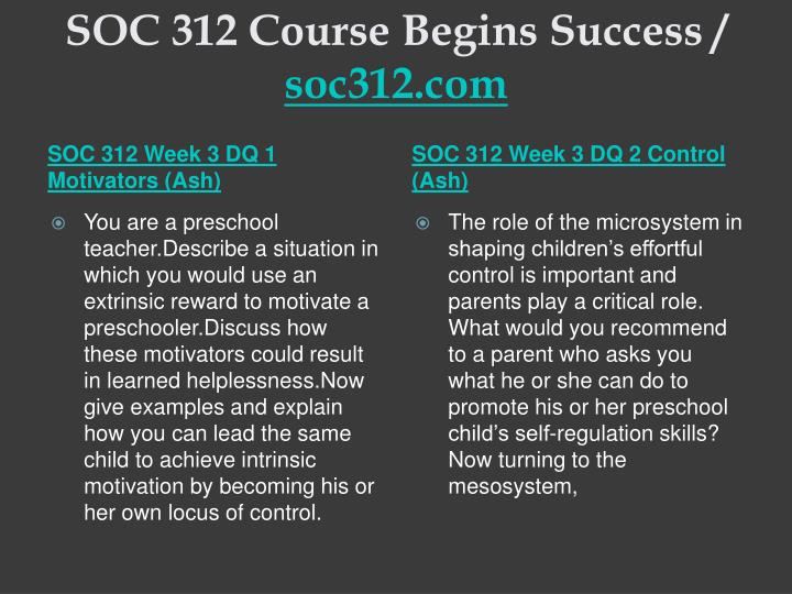 SOC 313 Complete Course