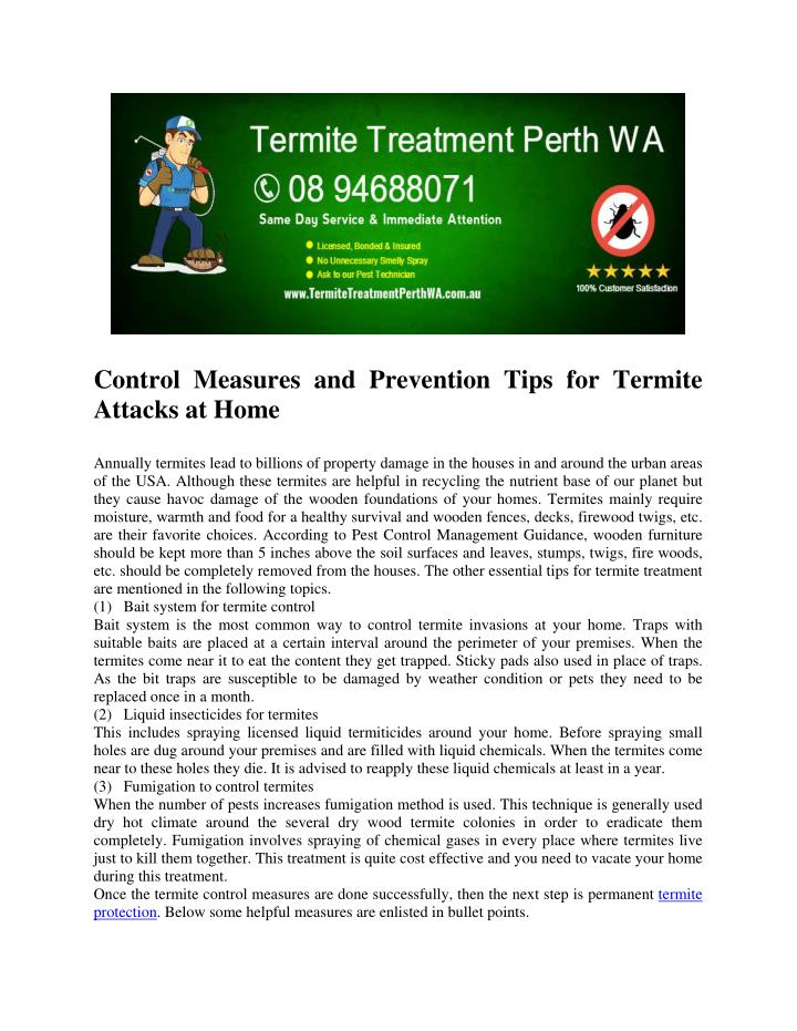 Control Measures and Prevention Tips for Termite
