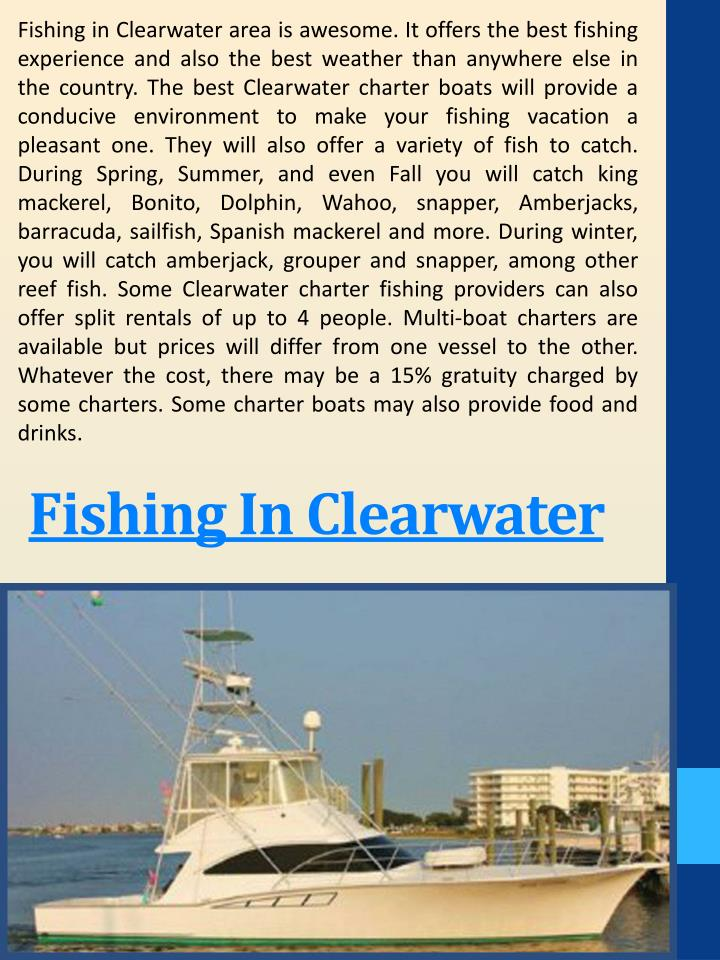 Fishing in Clearwater area is awesome. It offers the best fishing experience and also the best weather than anywhere else in the country. The best Clearwater charter boats will provide a conducive environment to make your fishing vacation a pleasant one. They will also offer a variety of fish to catch. During Spring, Summer, and even Fall you will catch king mackerel, Bonito, Dolphin, Wahoo, snapper, Amberjacks, barracuda, sailfish, Spanish mackerel and more. During winter, you will catch amberjack, grouper and snapper, among other reef fish. Some Clearwater charter fishing providers can also offer split rentals of up to 4 people. Multi-boat charters are available but prices will differ from one vessel to the other. Whatever the cost, there may be a 15% gratuity charged by some charters. Some charter boats may also provide food and drinks.