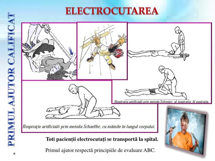 ELECTROCUTAREA