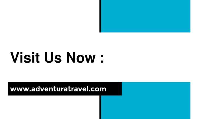 Visit Us Now :