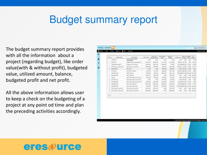Budget summary report