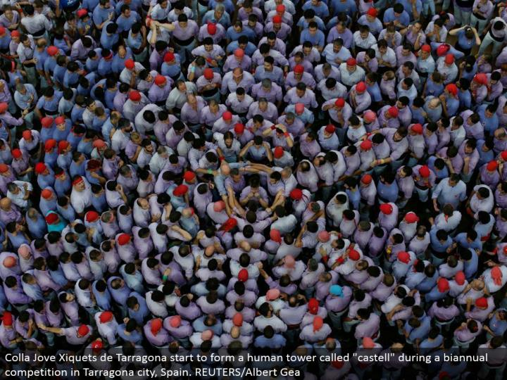 "Colla Jove Xiquets de Tarragona begin to shape a human tower called ""castell"" amid a semiannual rivalry in Tarragona city, Spain. REUTERS/Albert Gea"