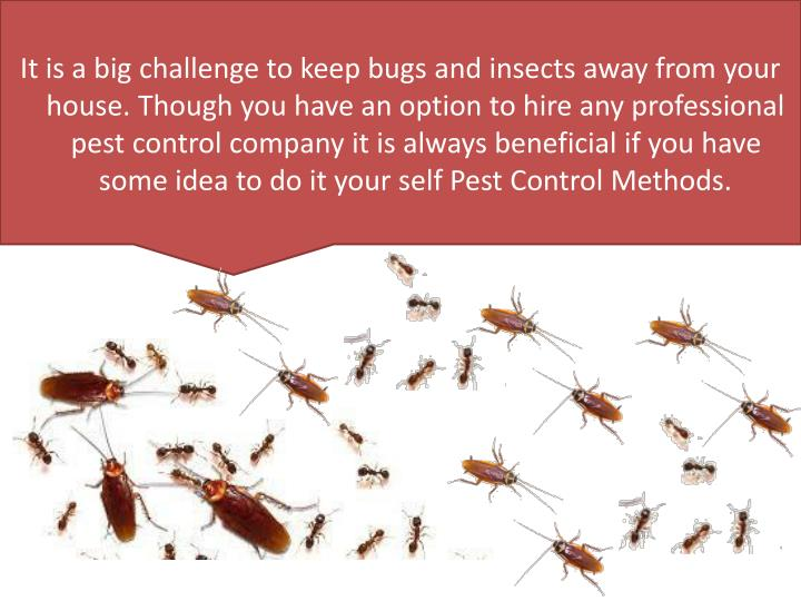 It is a big challenge to keep bugs and insects away from your house. Though you have an option to hire any professional pest control company it is always beneficial if you have some idea to do it your self Pest Control Methods.