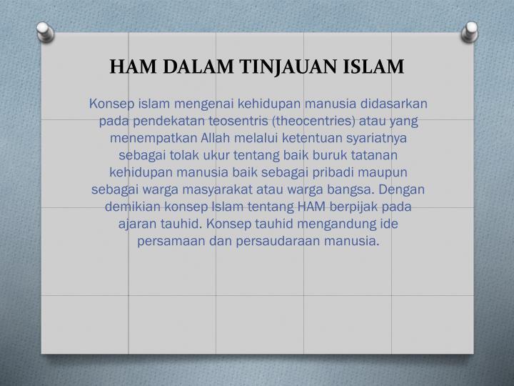 HAM DALAM TINJAUAN ISLAM