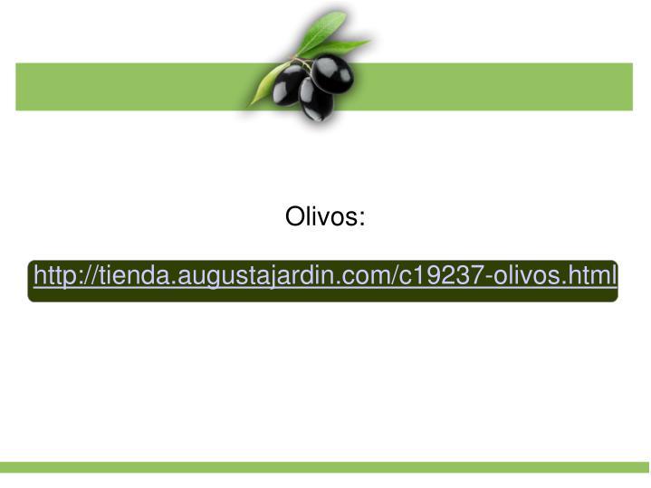 Olivos: