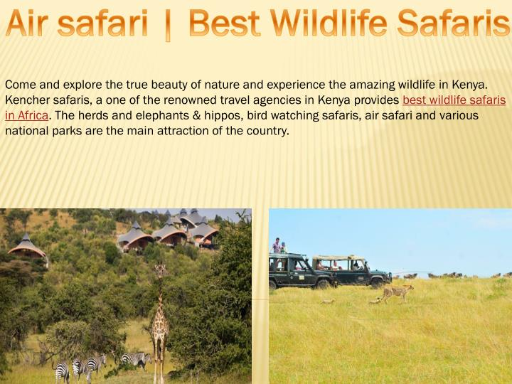 Air safari | Best Wildlife Safaris