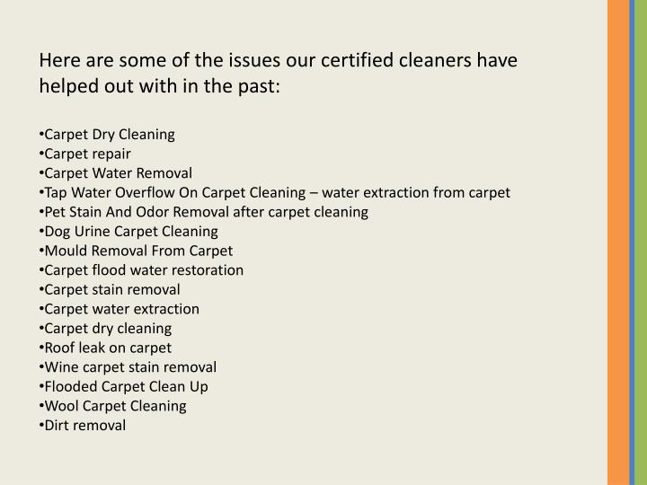 Here are some of the issues our certified cleaners have helped out with in the past