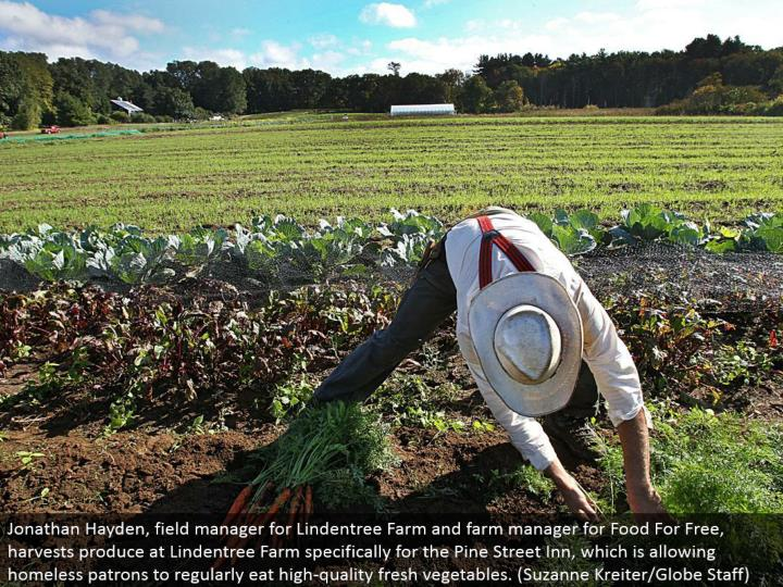 Jonathan Hayden, field administrator for Lindentree Farm and ranch supervisor for Food For Free, har...