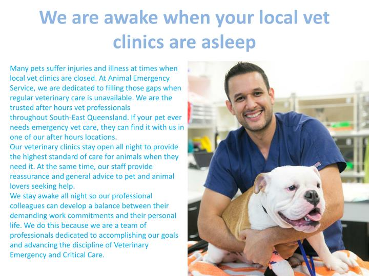 We are awake when your local vet clinics are asleep