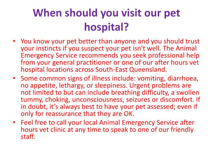 When should you visit our pet hospital