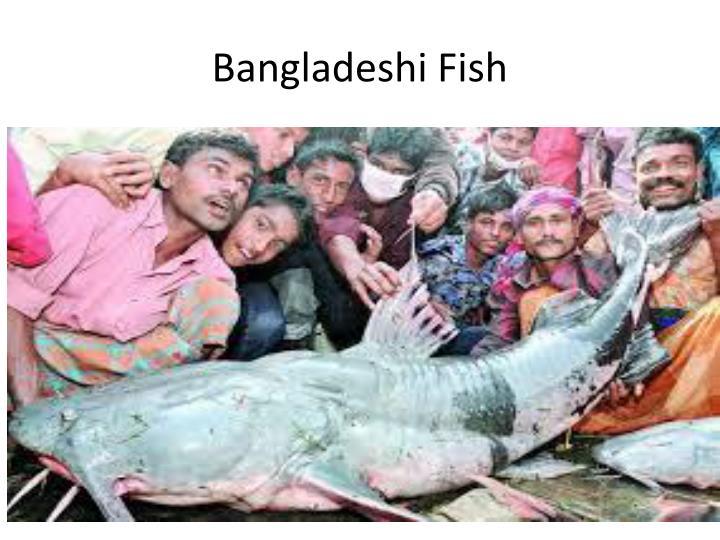 Bangladeshi Fish