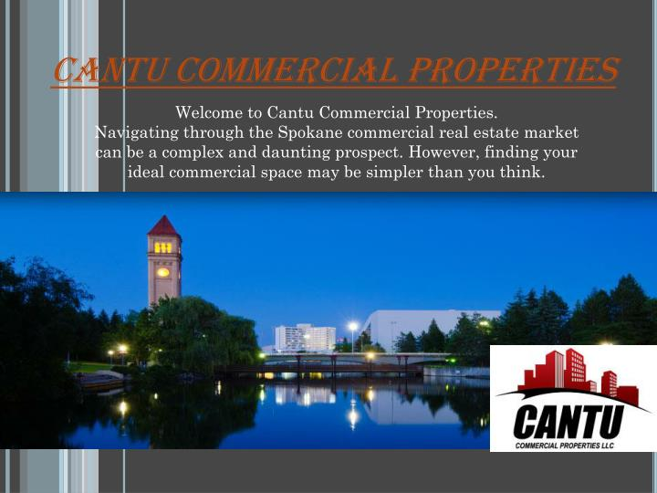 Cantu Commercial Properties