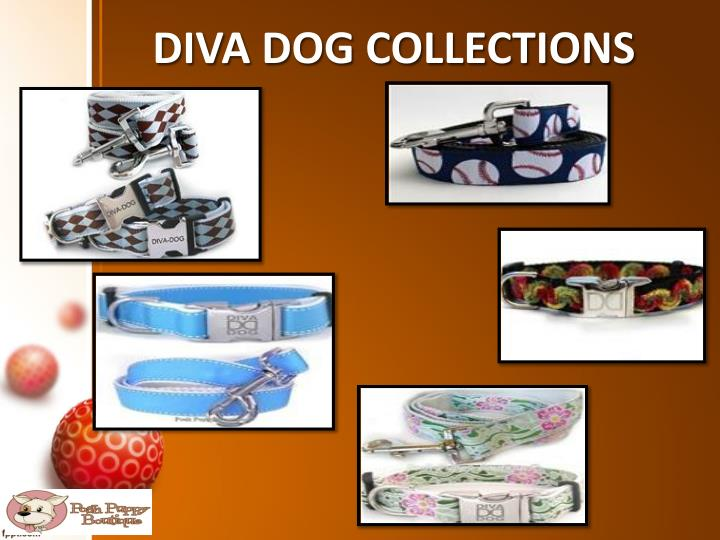 Diva dog collections