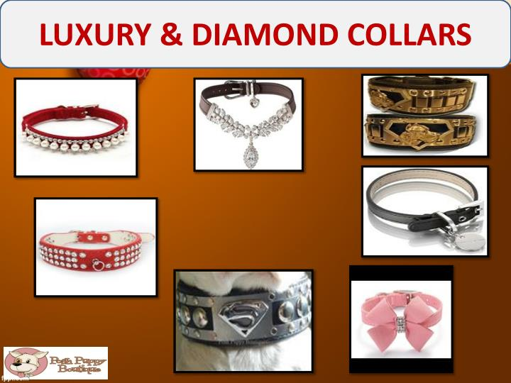 LUXURY & DIAMOND COLLARS