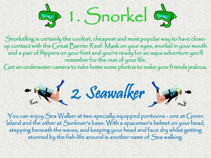 1. Snorkel