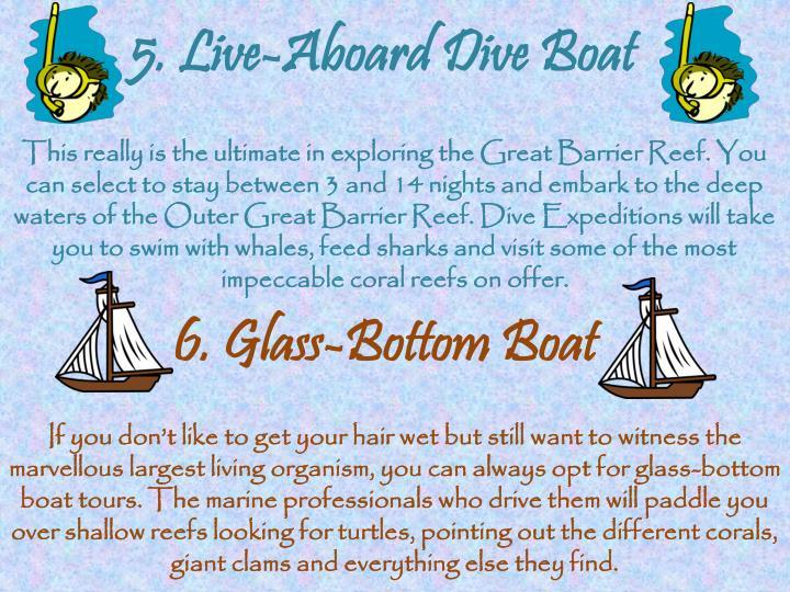 5. Live-Aboard Dive Boat