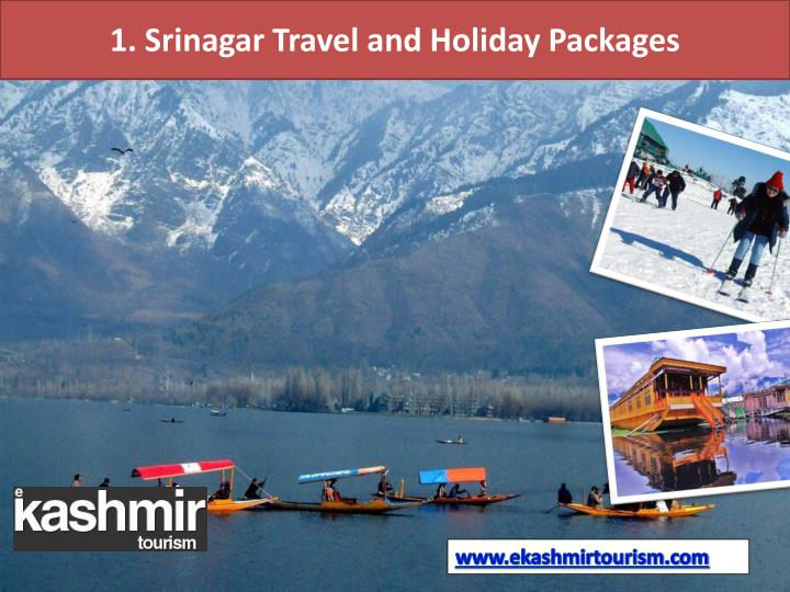 1. Srinagar Travel and Holiday Packages