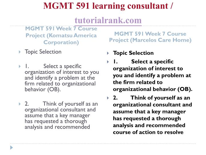 MGMT 591 learning consultant /