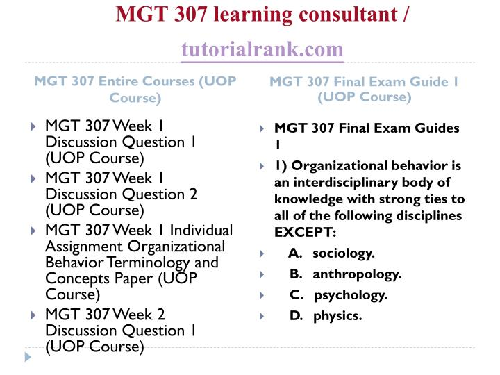 Mgt 307 learning consultant tutorialrank com1