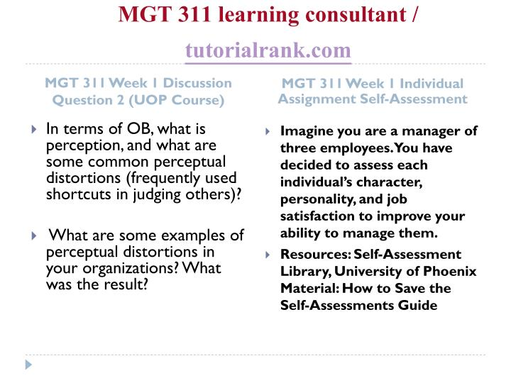 MGT 311 learning consultant /