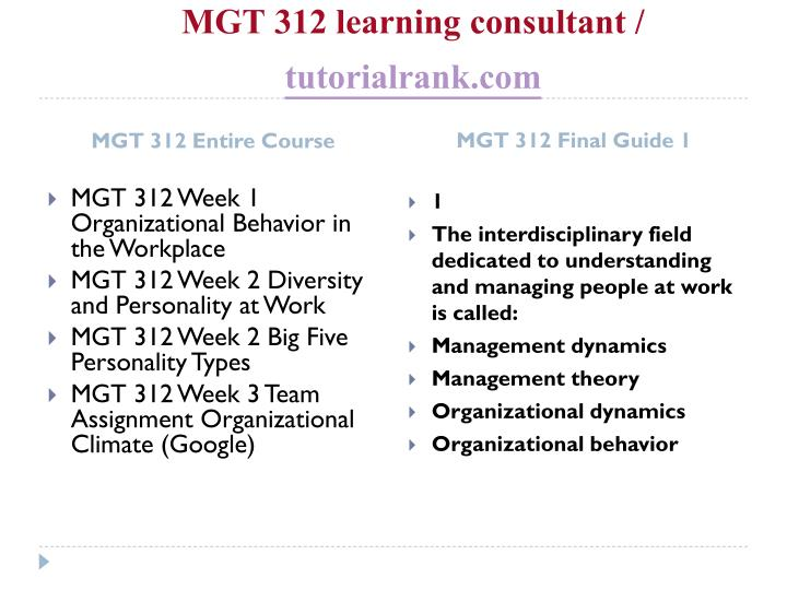 Mgt 312 learning consultant tutorialrank com1