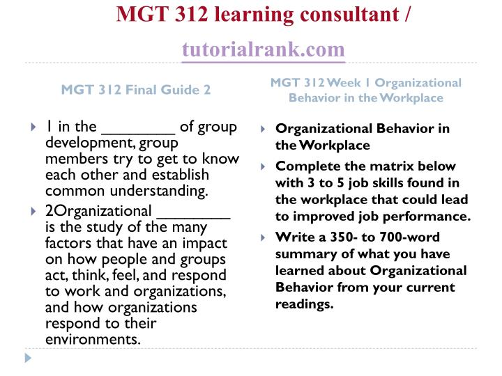 Mgt 312 learning consultant tutorialrank com2