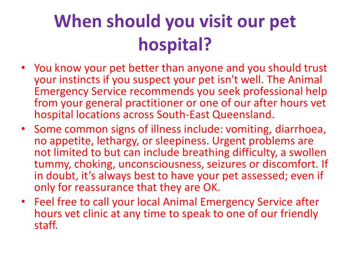 When should you visit our pet