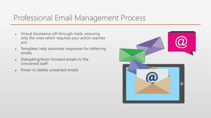 Professional Email Management Process