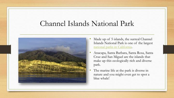 Channel Islands National Park