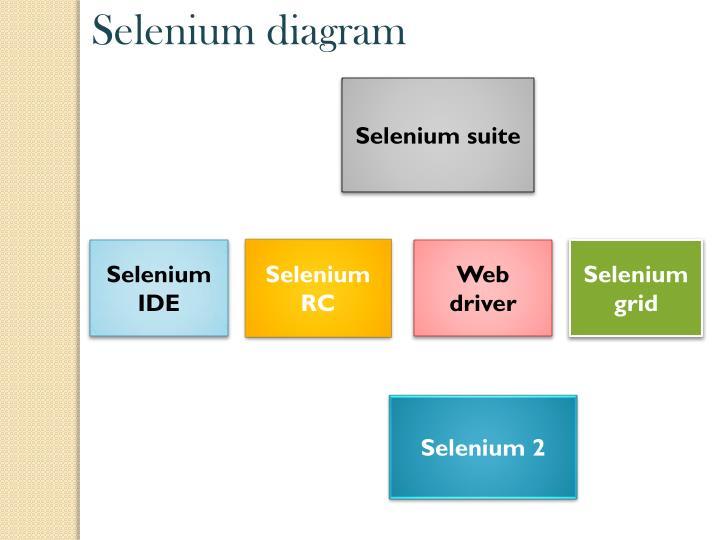 Selenium diagram
