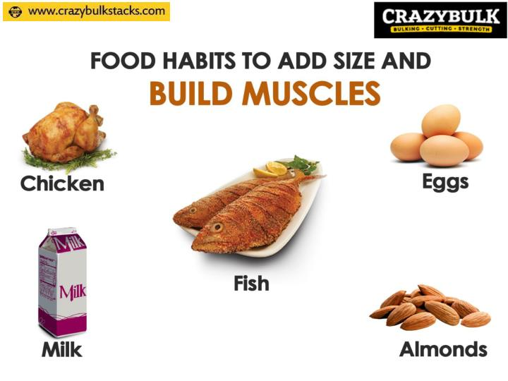 Food habits to add size and build muscles