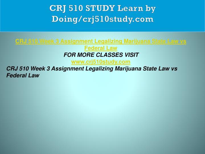 CRJ 510 STUDY Learn by Doing/crj510study.com