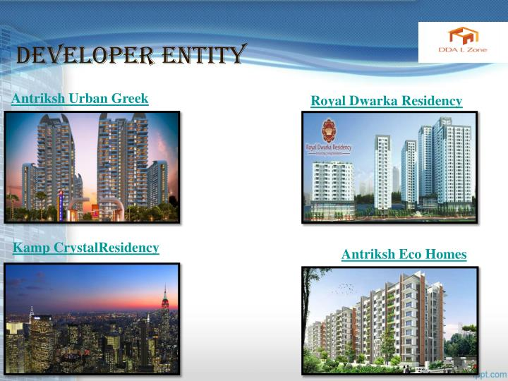 Developer entity