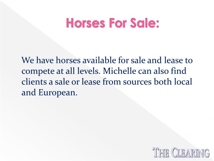 Horses For Sale:
