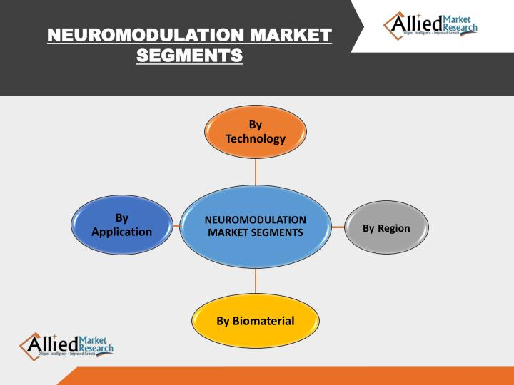 NEUROMODULATION MARKET SEGMENTS
