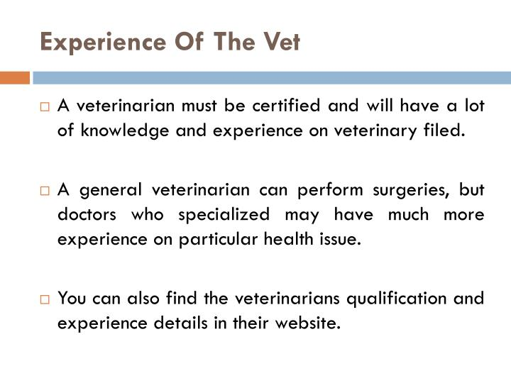 Experience Of The Vet