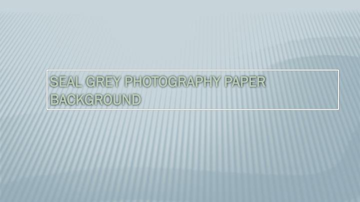 SEAL GREY PHOTOGRAPHY PAPER BACKGROUND