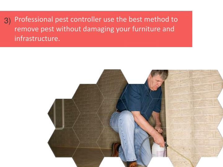 Professional pest controller use the best method to remove pest without damaging your furniture and infrastructure.