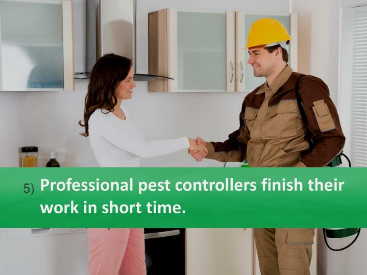 Professional pest controllers finish their work in short time.